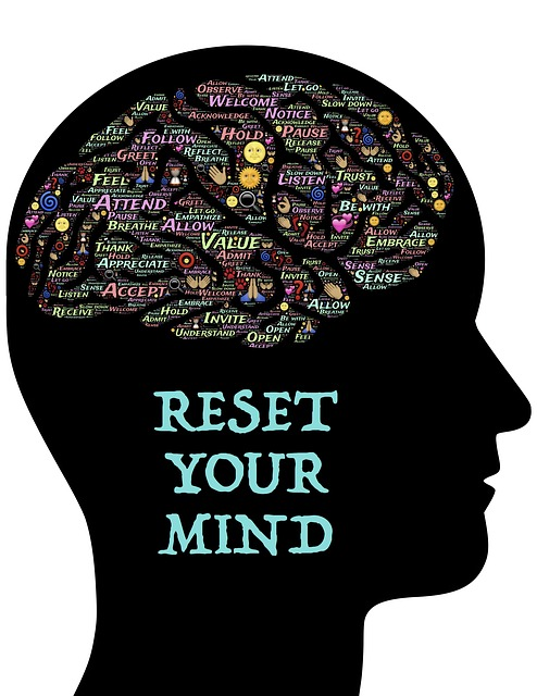 Great Mind reset